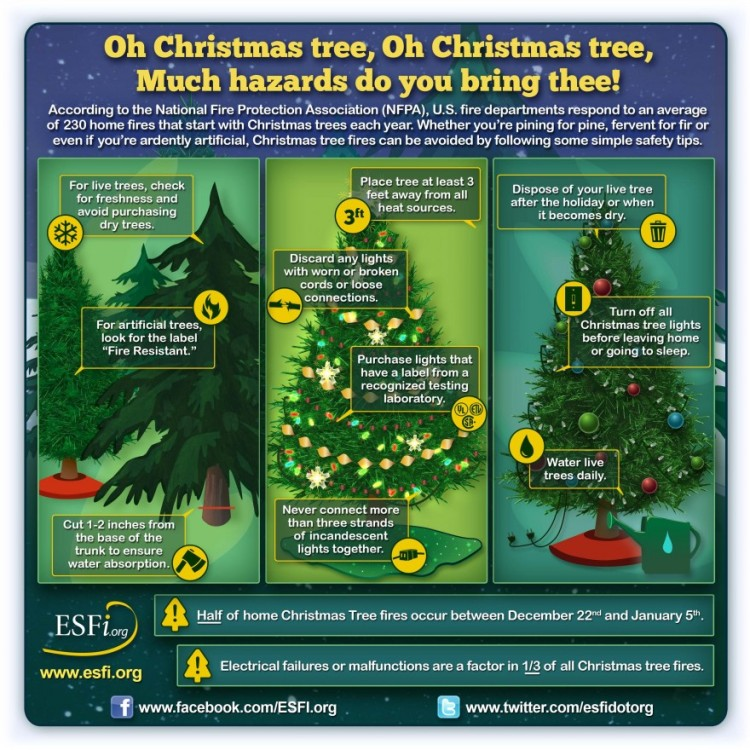 ChristmasTree_Infographic_Final-880x880.jpg