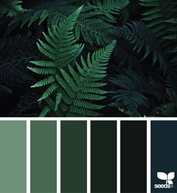 fern-green-palette-interior-design-home-inspiration