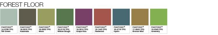 forest-floor-palette