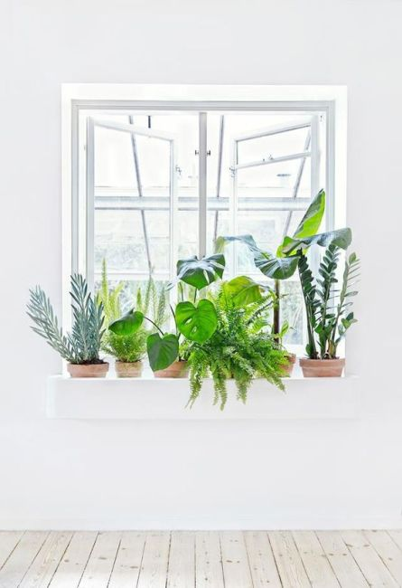 greenery-interior-design-bringing-the-outdoors-in-inspiration