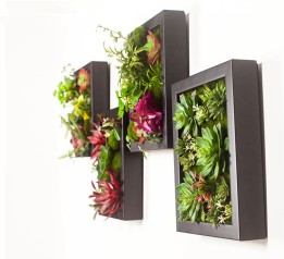 large-3d-artificial-plants-wall-decoration-photo-frame-succulent-plants-artificial-flowers-mural-home-decoration-on