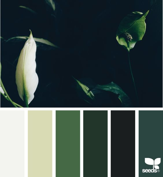 leaves-jungle-interior-design-inspiration-outside-in-color-palette
